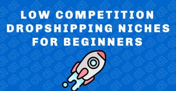 low competition dropshipping niches for beginners